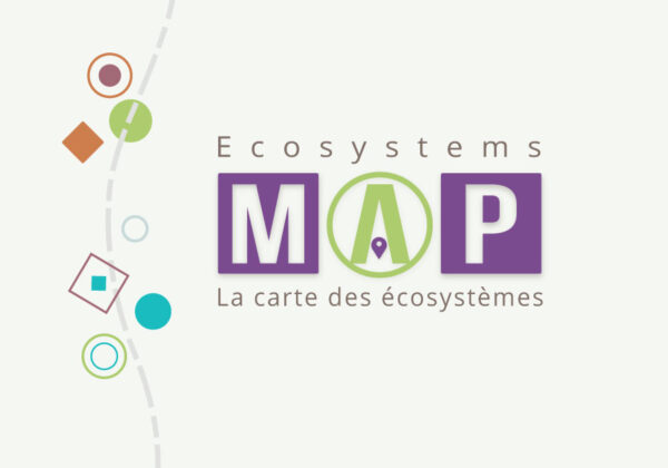 Mapping Ecosystems