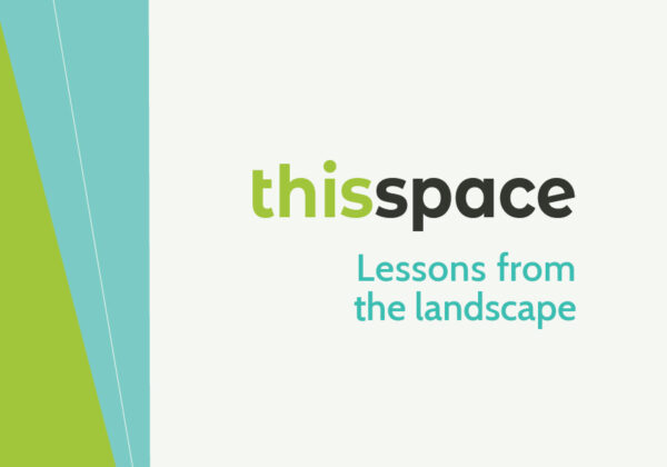 This Space: Lessons from the landscape