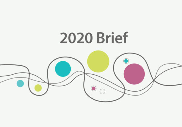 2020 Brief: Year In Review (Video)