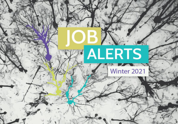 Job Alerts (Winter 2021)